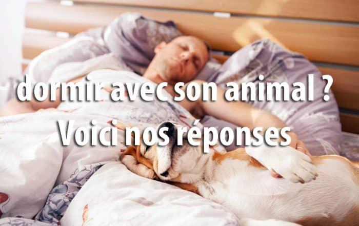 Dormir avec son animal